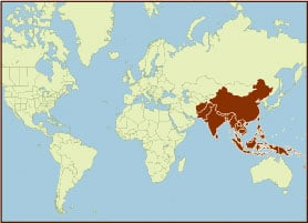 Spice Map - Asia, Southeast